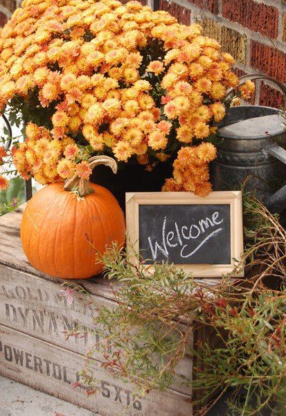 Welcome Autumn!: Welcome Autumn!