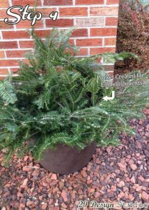Evergreen filled outdoor urn